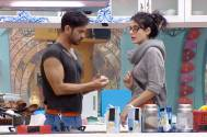 Keith turns 'peace-maker' in Rochelle-Mandana spat in Bigg Boss 9