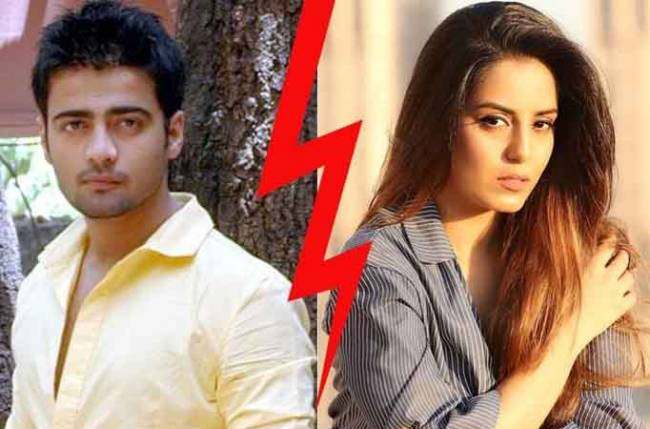 Manish Naggdev seeks counselling to overcome break-up with Srishty Rode